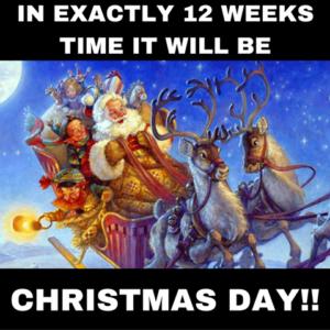Christmas 12 weeks